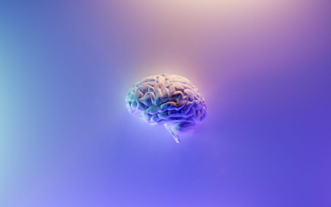Wie die Angst in dein Gehirn kommt und wie du sie wieder hinauskomplimentierst.